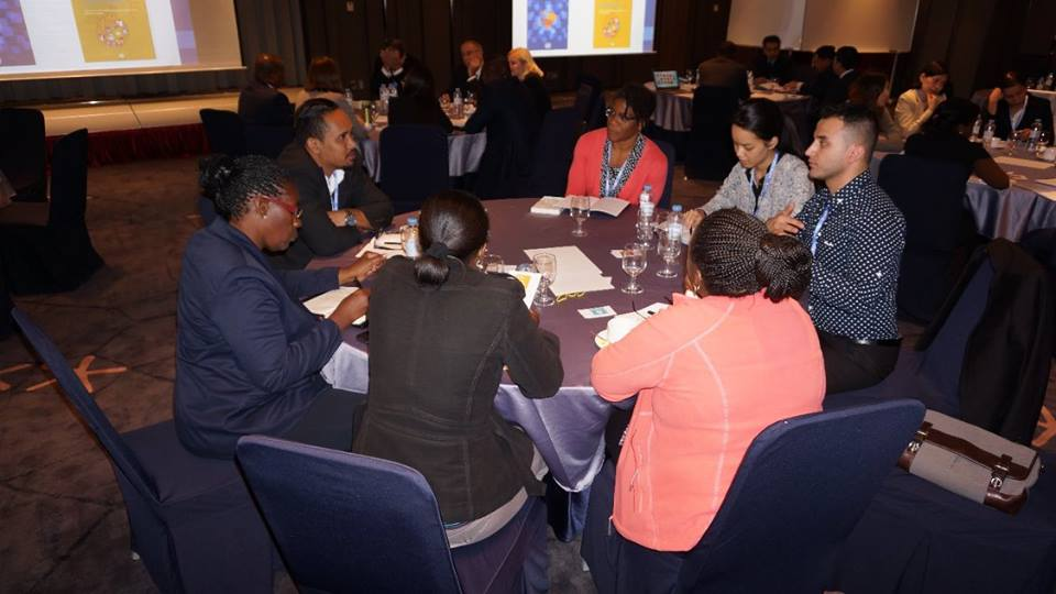 The fourth annual Sustainable Development Transition Forum ...